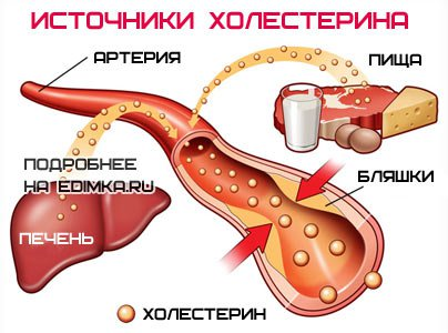 холестерин в крови 9.5 что делать